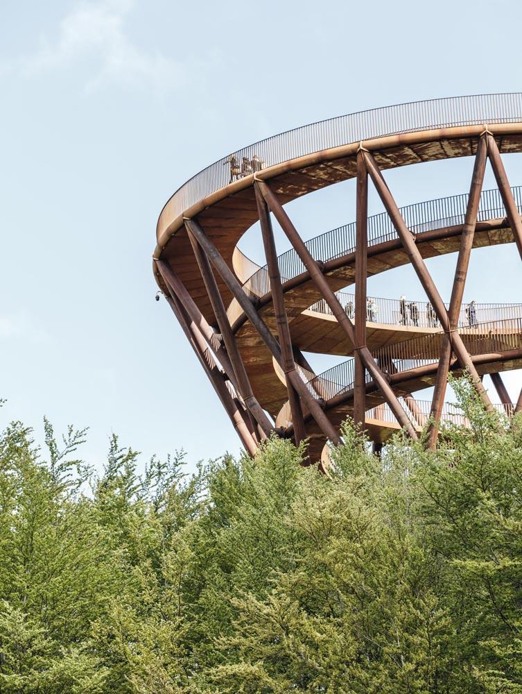 برج پیاده روی جنگلی