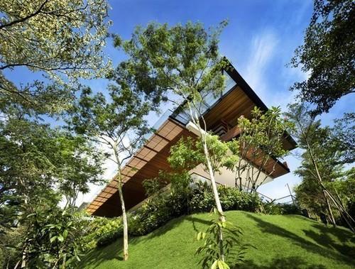 خانه Botanica